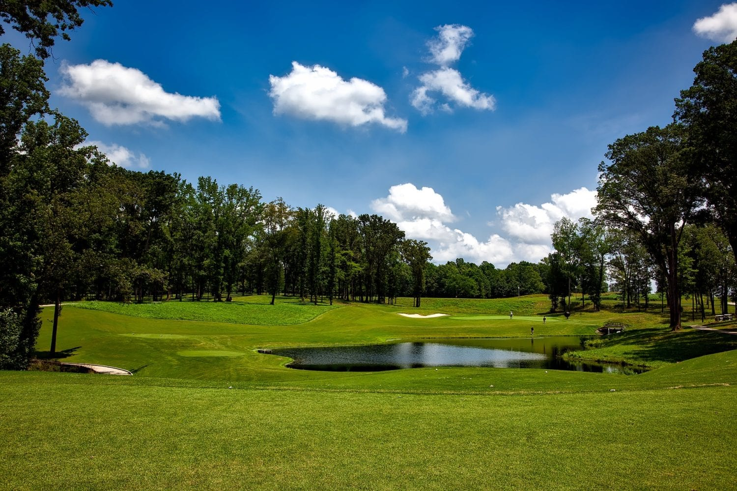 The power of bacteria in pond maintenance on golf courses
