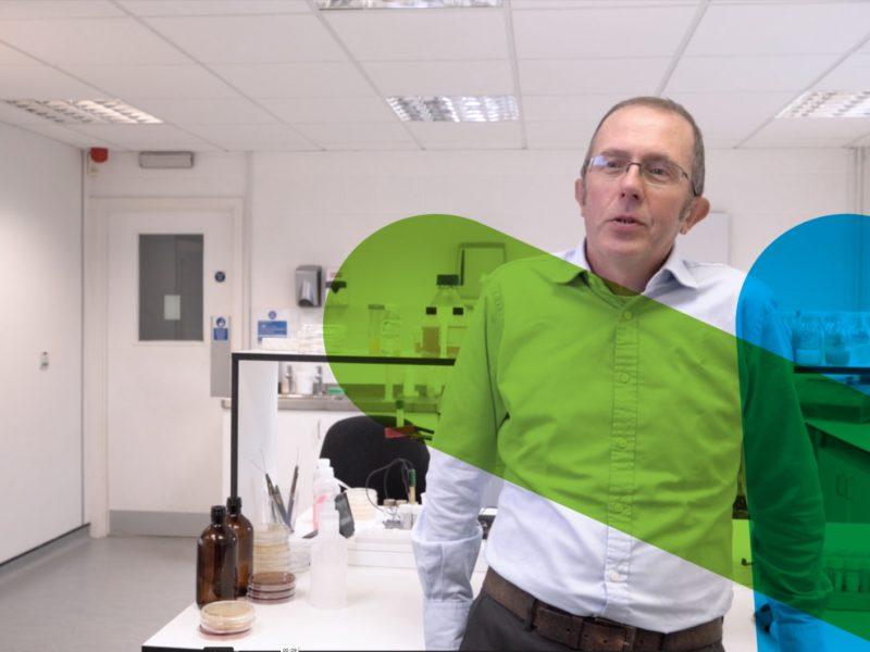 FAQ: How probiotics can benefit large-scale manufacturers & formulators (video)